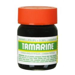 Tamarine Marmellata 260g 8%+0,39% con effetto lassativo contro la stitichezza