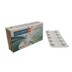 Kappaphyt 10 - Integratore per la funzionalità gastrointestinale e il metabolismo del ferro