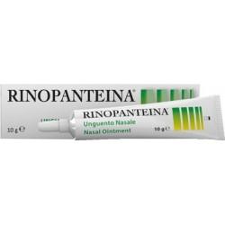 Rinopanteina Unguento Nasale Idratante e Lenitivo Contro le Irritazioni 10 g