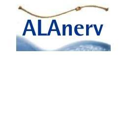 Alanerv 920 mg integratore antiossidante per il sistema nervoso 20 capsule