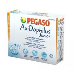 Pegaso Axidophilus Junior fermenti lattici vivi per bambini 14 bustine