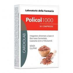 POLICOL 1000 30 COMPRESSE